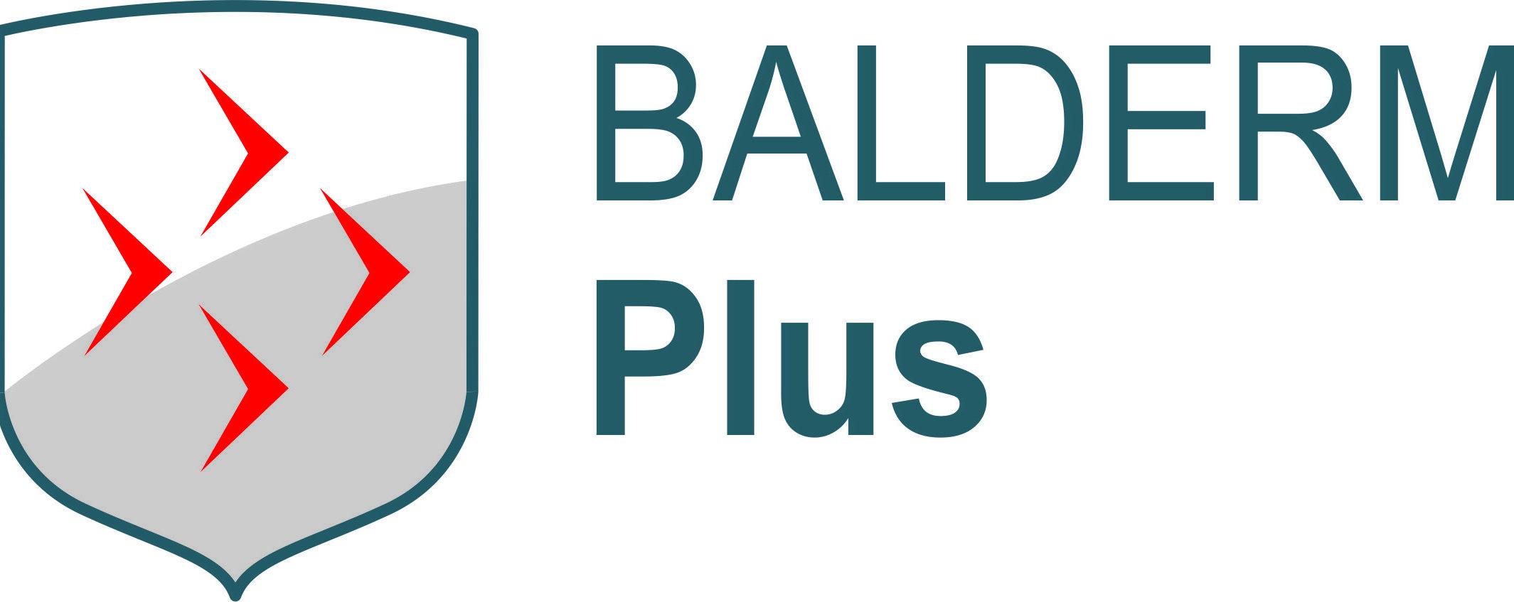BALDERM Plus s.r.o.